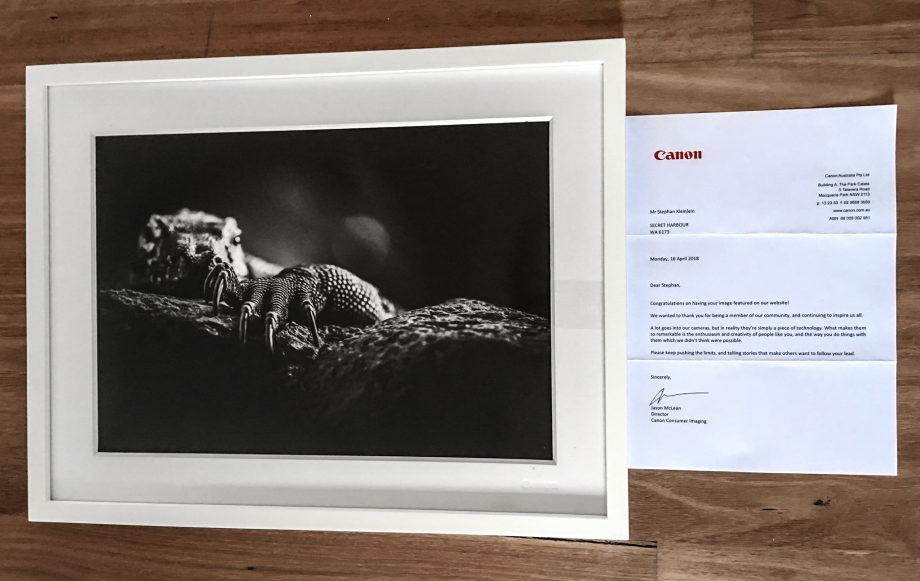 Recognition by Canon Australia